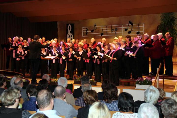 Der Frauenchor belle voci und der Männerchor Fischbach mit dem Dirigenten des Frauenchores István Boldizsár. | Bild: Martin Gemar